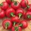 พริกเชอรี่หวาน - Sweet Red Cherry Pepper thumbnail 2
