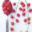 มะเขือเทศสะพูน เล็กสุดในโลก - Spoon Tomato thumbnail 1