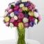 ดอกแอสเตอร์ - Aster Flower Mix thumbnail 1