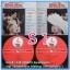 S1-9 แผ่นเสียง เพลงไทยสุนทราภรณ์ ขับร้องโดย หลายศิลปิน ไม่เคยลงเข็ม thumbnail 1