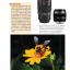 คู่มือถ่ายภาพด้วยกล้อง DSLR ฉบับสมบูรณ์ thumbnail 11