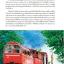 SWISS สวิตเซอร์แลนด์ เที่ยวเมืองเก่า ขุนเขาเสียดฟ้า หลังคายุโรป thumbnail 19