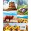 ตะลุยเมืองจีน thumbnail 2