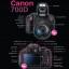 คู่มือถ่ายภาพด้วยกล้อง DSLR ฉบับสมบูรณ์ thumbnail 7