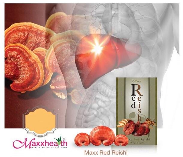MAXX RED REISHI 10 CAPSULES