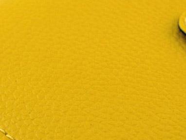 Light Yellow(เหลือง) - Nano Wallet