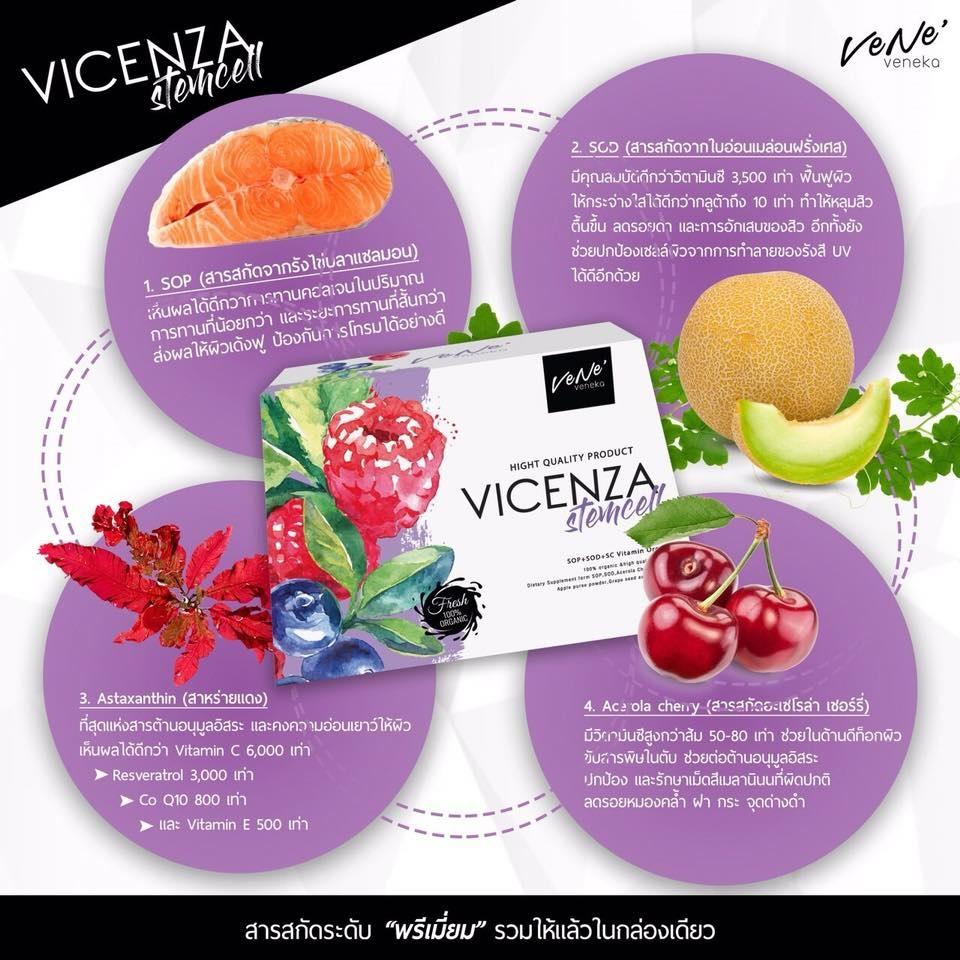 Vene Vicenza Stemcell มีส่วนประกอบอะไรบ้าง เวเน่ เวเนก้า สเต็มเซลล์ มีส่วนประกอบอะไรบ้าง