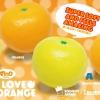 I044 I-bloom I LOVE ORANGE เหลือง 1 ชิ้น สกุชชี่ ไอบูม ส้มสีเหลือง ขนาด 9 CM