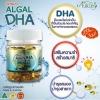 Ausway Smart Algal DHA วิตามินบำรุงสมอง ดีเอชเอ 90 เม็ด