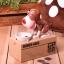 KA006 กระปุกออมสิน สุนัขกินเหรียญ thumbnail 1